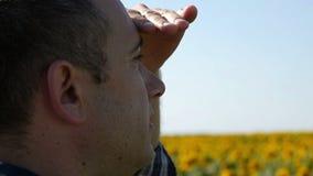 一个男性农夫特写镜头的面孔看向日葵领域 年轻有为的农夫对未来收获关心 股票录像