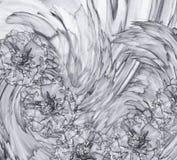 一个白灰色丁香的抽象背景 与康乃馨灰色花的花卉背景  图库摄影