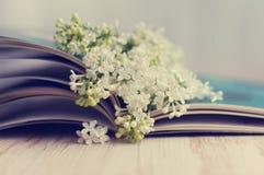 一个白色丁香和册页的春天浪漫花束 库存照片