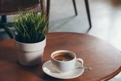 一个白色杯子热的咖啡和一个小树罐在葡萄酒木桌上 库存照片