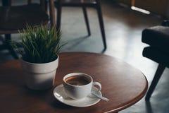 一个白色杯子热的咖啡和一个小树罐在葡萄酒木桌上 库存图片