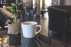 一个白色陶瓷咖啡杯热的咖啡和一个小树罐在桌上在咖啡馆 库存图片
