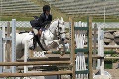 一个白马的年轻女骑士 免版税图库摄影
