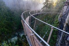 一个看法从上面从在粗砺的小河的吊桥  免版税库存照片