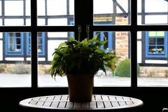 一个看法的图象从一个格子窗口的在一个半木料半灰泥的房子 免版税图库摄影