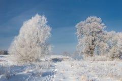 一个真正的俄国冬天 与使目炫白色雪的早晨冷淡的冬天风景和树冰、河和饱和的蓝天 库存照片