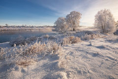 一个真正的俄国冬天 与使目炫白色雪的早晨冷淡的冬天风景和树冰、河和饱和的蓝天 免版税图库摄影