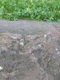 一个石墙的上面 图库摄影