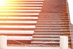 一个石楼梯撒布与下落的明亮的黄色秋叶 迷离和明亮的聚焦 库存图片