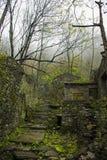 一个石老镇 库存图片