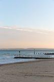 一个码头的金黄日落光在一个海滩的与沙子和没有云彩在天空在一个海滩在欧洲 免版税图库摄影