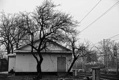 一个私有大厦和一棵黑树的门面 免版税图库摄影