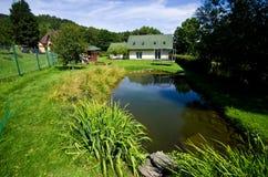 一个私有房子的绿色菜园 免版税库存图片