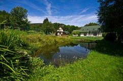 一个私有房子的绿色菜园 免版税库存照片
