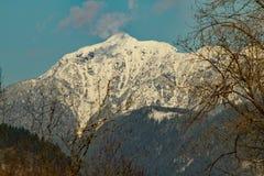 一个积雪的山峰 库存图片