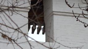 一个窗口在阿斯特拉罕克里姆林宫教会里 股票录像
