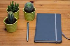 一个笔记本和小仙人掌的细节在木桌,简单派上 免版税图库摄影
