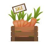 一个箱子红萝卜 出售蔬菜 街道食品贸易 向量 库存照片