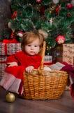 一个篮子的一个小女孩在圣诞树下 免版税库存图片