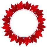 一个红色叶茂盛边界 图库摄影