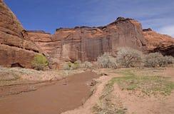 一个红色岩石峡谷的泥泞的河 免版税图库摄影