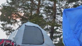 一个红色帽子的可爱的年轻旅游妇女在海岸的森林附近收集旅游帐篷 免版税图库摄影