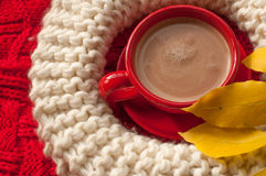 一个红色杯子可可粉,灰棕色编织了围巾,并且黄色秋叶安置了n红色表面 图库摄影