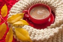 一个红色杯子可可粉,灰棕色编织了围巾,并且黄色秋叶安置了n红色表面 库存图片