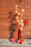 一个红色花瓶的干燥标本集在一个长木凳站立 库存图片