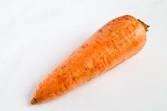 一个红萝卜特写镜头 库存图片