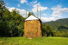 一个绿色草甸的干草堆 库存照片