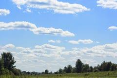 一个绿色领域的风景反对蓝天的 免版税库存图片
