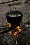一个罐在火的汤在森林里 免版税图库摄影