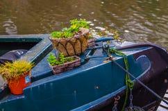 一个罐的植物在一艘老,停住的驳船的弓 库存图片
