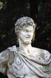 一个罗马雕象的胸象 免版税库存照片