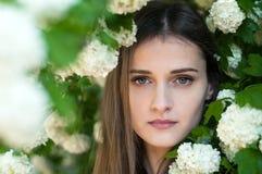 一个美丽和迷人的女孩在一棵开花的树附近站立 图库摄影
