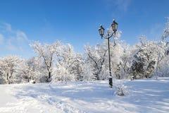 一个美丽如画的修道院海岛冬天风景,用雪盖的公园,与一个美丽的灯笼在Dnipro市 图库摄影