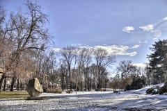 一个美丽的城市公园在冬天 免版税图库摄影
