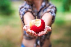 一个美丽的女婴的画象用苹果喜欢耳环 一件格子花呢上衣的一个女孩在收获苹果的农场微笑着和ho 库存照片