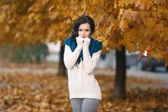 一个美丽的女孩的秋天画象 库存照片