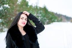 一个美丽的女孩的画象一个冬天p的背景的 图库摄影