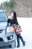 一个美丽的女孩的画象一个冬天p的背景的 库存图片