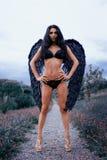 一个美丽的女孩的画象有黑色的飞过邪魔 免版税库存图片