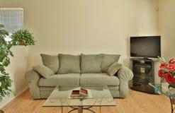 一个美丽的家庭客厅 库存图片