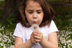 一个美丽的小女孩的画象有花的 库存照片