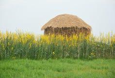 一个美丽的小屋 免版税图库摄影