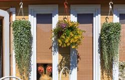 一个美丽的小木房子的看法外部与窗口用垂悬的花装饰 库存图片