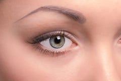 一个美丽的少妇的右眼睛 免版税库存照片