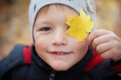 一个美丽的愉快的男孩的画象 免版税库存照片