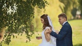 一个美丽的新娘和英俊的新郎的画象愉快一起在桦树树丛里 新郎来到新娘后边 影视素材